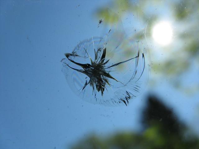 windshield maintenance